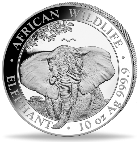 71648202021 15_10oz_African_Wildlife_First Struck Collection_VS